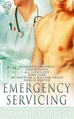 emergencyservicing_800